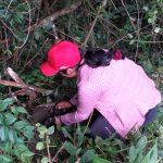 En El Ingenio entregan plantas para agro reforestación y protección de vertientes